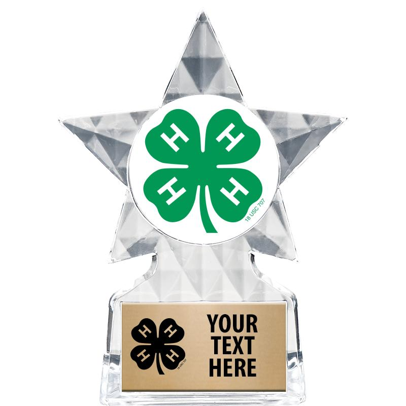 4H ICICLE INSERT STAR TROPHY