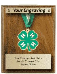 "8""x10"" MEDAL & RIBBON PLAQUE"