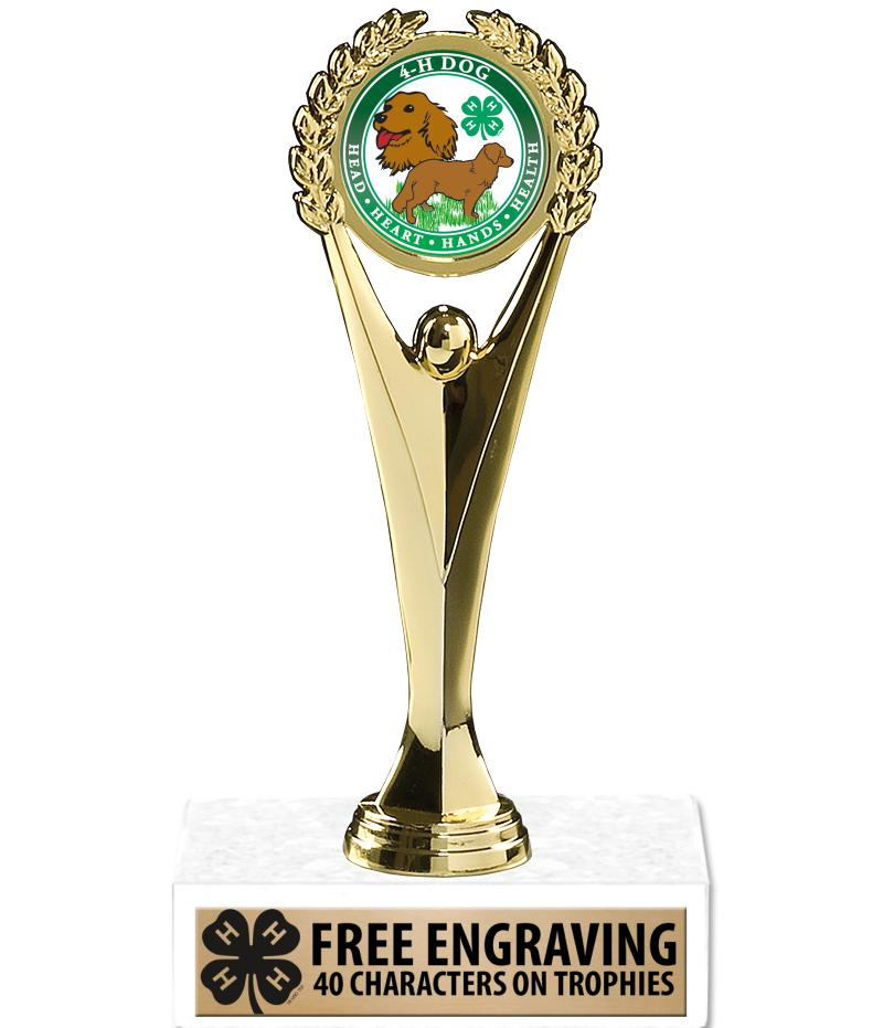"9"" 4-H Achievement Insert Trophy"