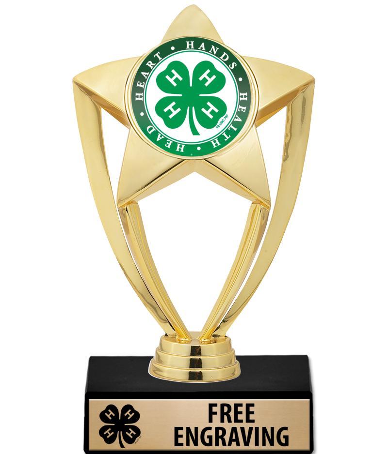 "6"" 4-H Star Gold Insert Trophy"