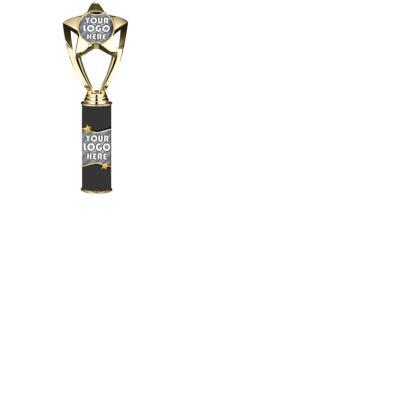 "10""-12"" Custom Shiny Gold Star Insert"