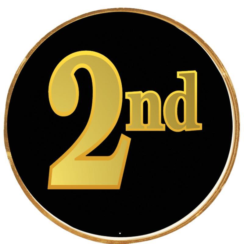 """2""""INSERT BUTTON PIN"""