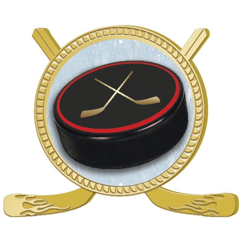 "1 3/4"" Hockey Insert Pin"