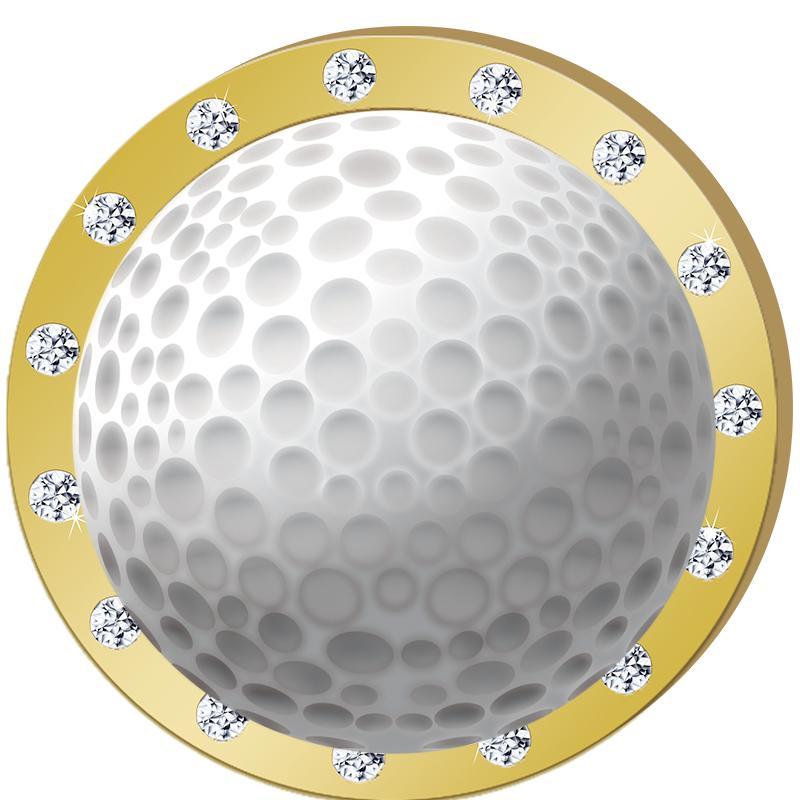 Gold Rhinestone Insert Pin