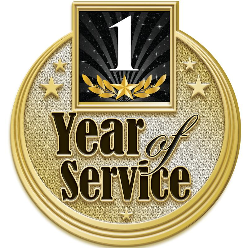 "1.25"" 1 YEAR SERVICE PIN GOLD"