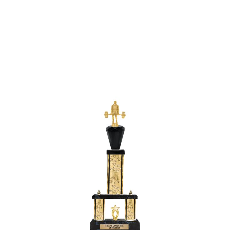 """24""""GOLD/GD-STARS-2 TIER GD CUP"""