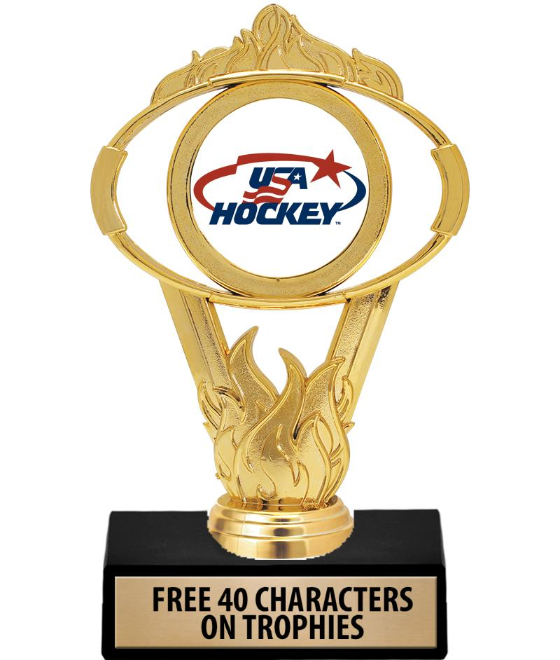 "6"" GOLD OVAL INSERT TROPHY"