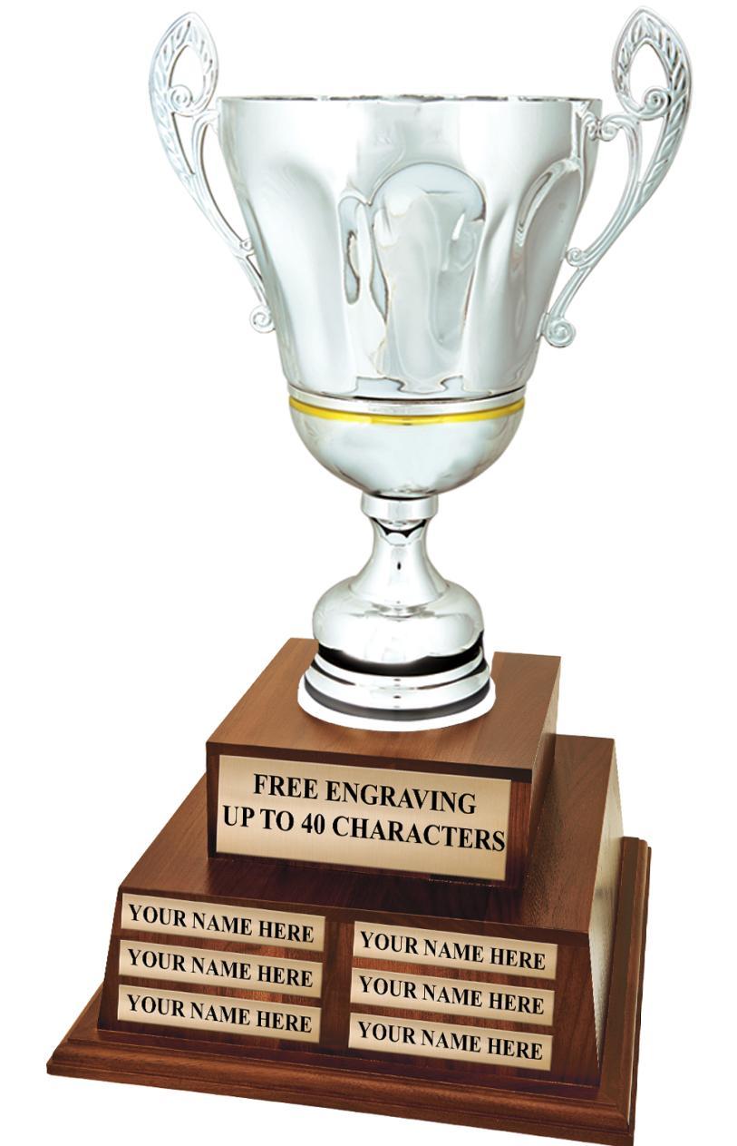 Metal Allusion Cup Perpetual Trophy