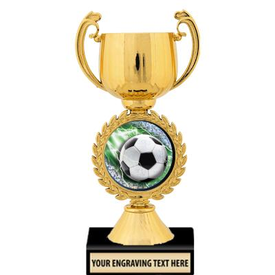 "7"" Gold Insert Cup Trophy"