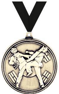 Tae Kwondo Sparring Medal