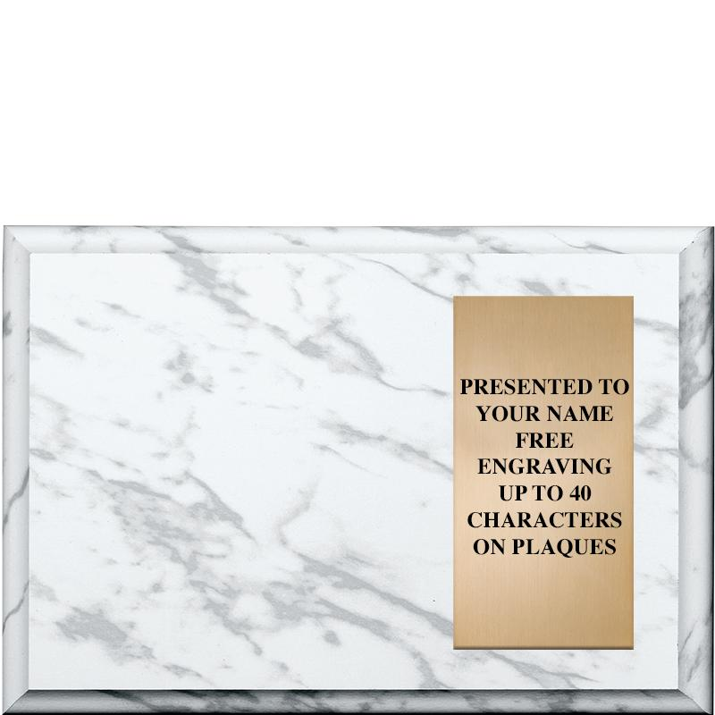 Color Marbleized Horizontal Insert Plaques